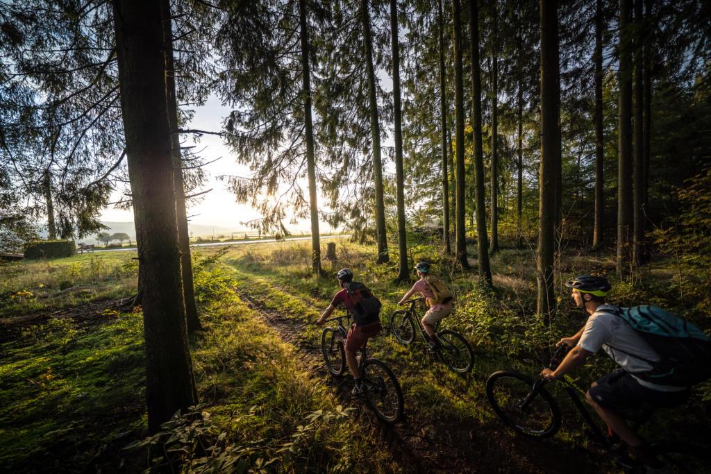 Stoneman Arduenna Belgien BeNeLux MTB Mountainbike Tour Eifel Ardennen 07