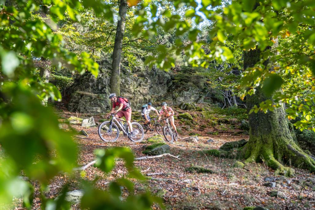 Stoneman Arduenna Belgien BeNeLux MTB Mountainbike Tour Eifel Ardennen 09